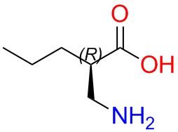 (R)-2-aminomethy-pentanoicacid